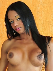 Exotical tranny police showi...